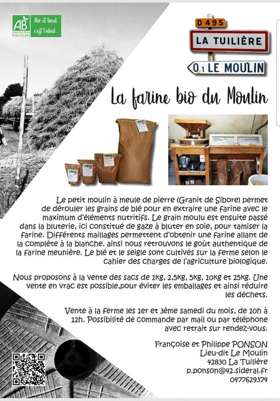 La farine bio du Moulin Photo