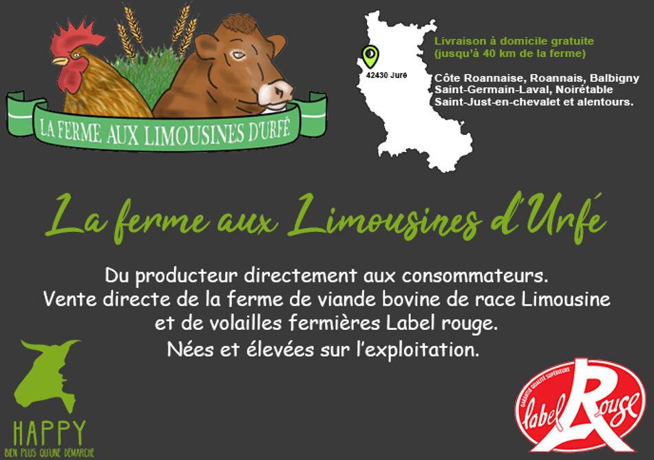 LA FERME AUX LIMOUSINES D'URFE Logo
